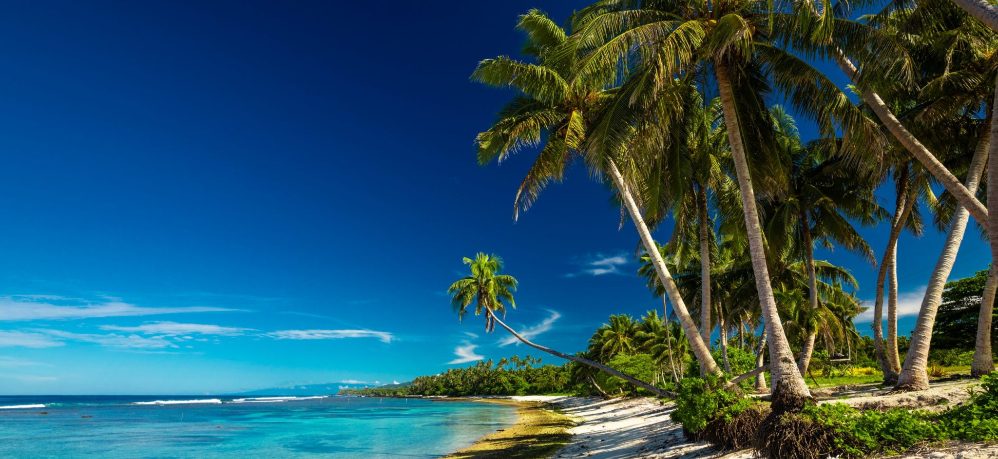 Beach with coral reef on south side of Upolu framed by palm leaves, Samoa Islands